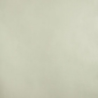 Обои Farrow & Ball Plain & Simple Plain BR 3408