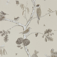 Обои Sanderson Woodland Walk Wallpapers Woodland Chorus 215704