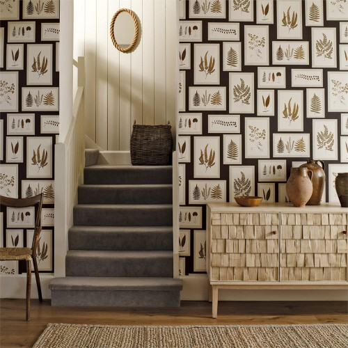 Обои Sanderson Woodland Walk Wallpapers Fern Gallery 215712