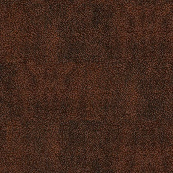 Кожаные полы Vinyline Corkleather Bison Oxyd