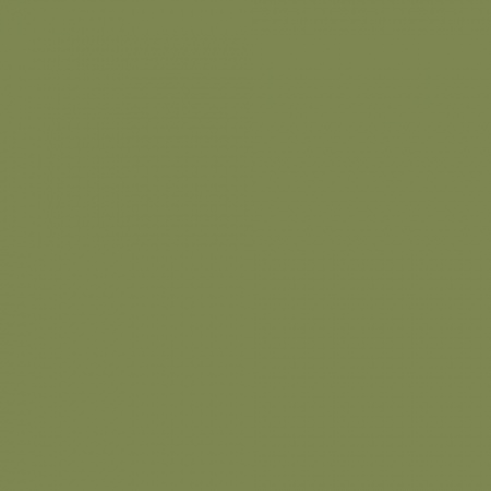 Краска Farrow & Ball Colour by Nature цвет Sap Green W56