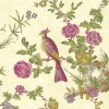 Обои Little Greene Archive Trails Darwin - Jeune