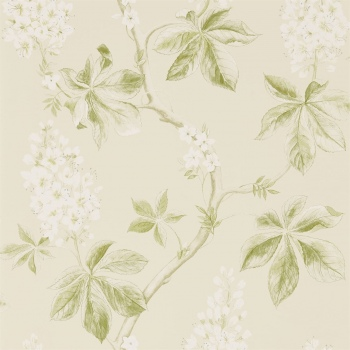 Обои Sanderson Woodland Walk Wallpapers Chestnut Tree 215707