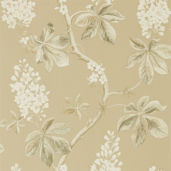 Обои Sanderson Woodland Walk Wallpapers Chestnut Tree 215711