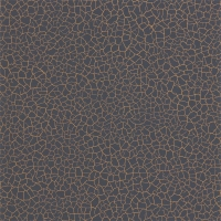 Обои Zoffany Akaishi Cracked Earth 312531