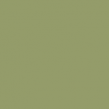 Цвет олива
