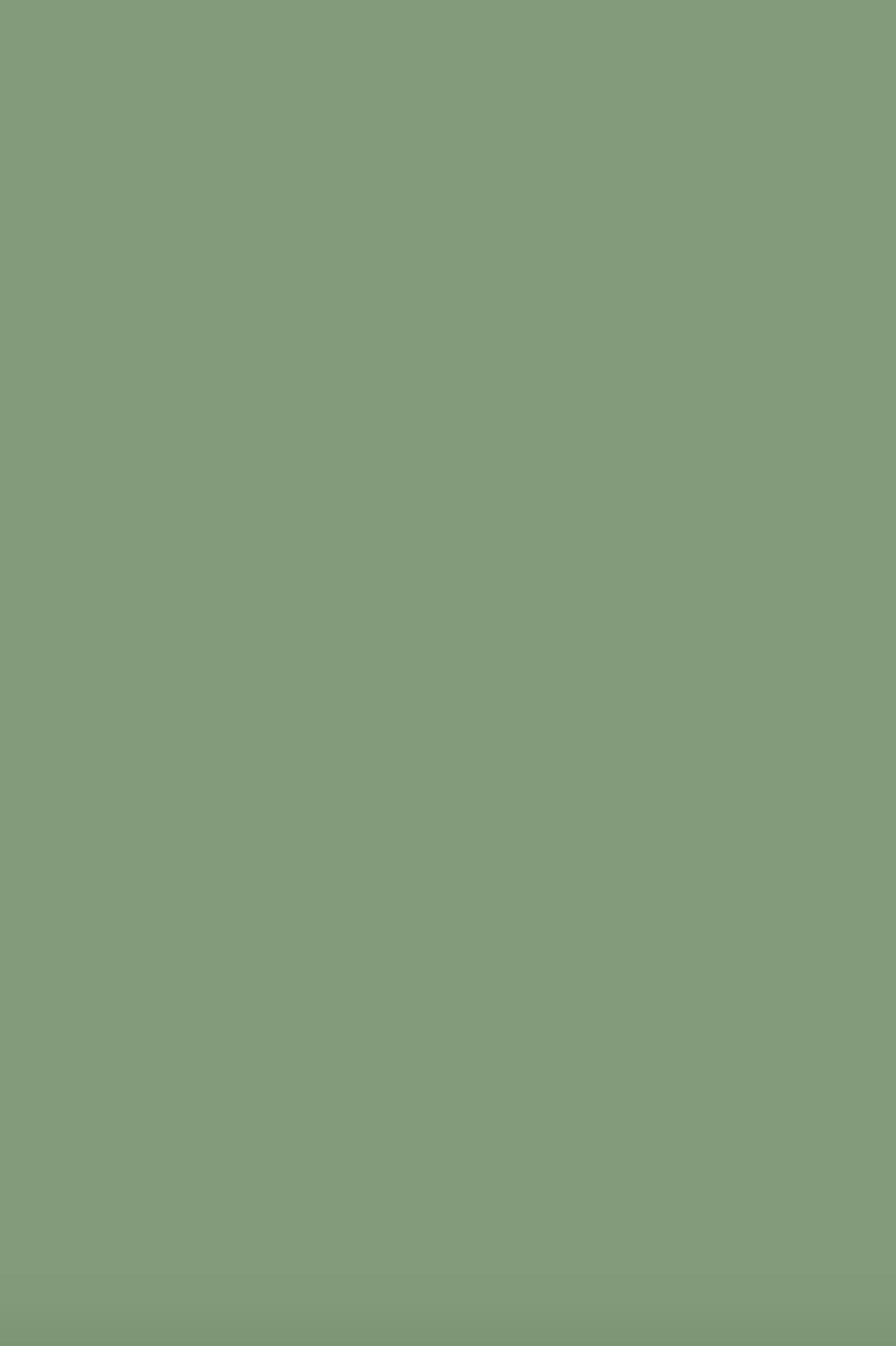Краска Farrow Amp Ball цвет Breakfast Room Green 81 купить в